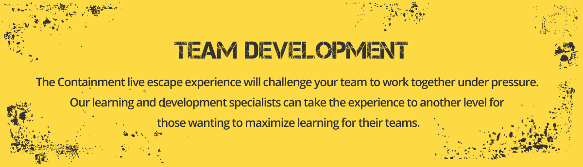 Team Development - MBTI, Belbin and Bespoke Team Development Workshops.